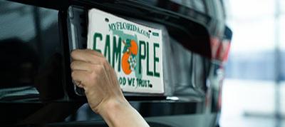 vehicle plate